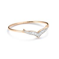diamond wise ring